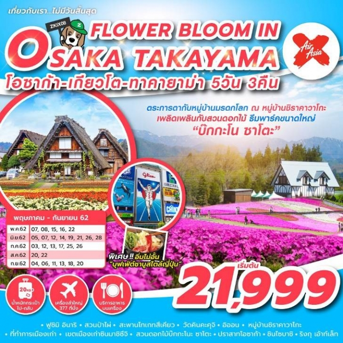 FLOWER BLOOM IN OSAKA TAKAYAMA รหัส ZKIX08 5 วัน 3 คืน_JUN - SEP19